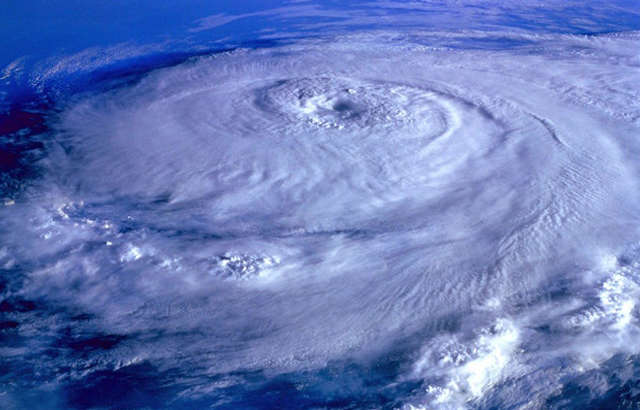How Safe Are Your Pets This Hurricane Season?