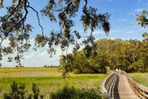 Biking Jekyll Island