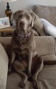 Sadie Looking Cute