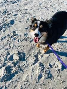 Ruka on the Beach