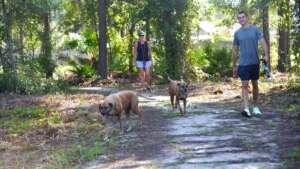 Abess Dog Park