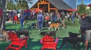 BrewHound Dog Park + Bar